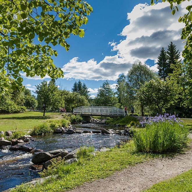 Hotelli Lasaretin takapihalta löytyvät lohiportaat ja kaunis Ainolan puisto.